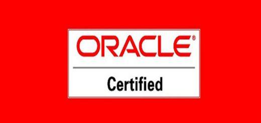 Pacote de Certificação Java